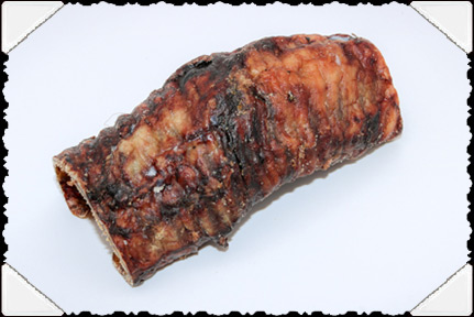 Bison Trachea
